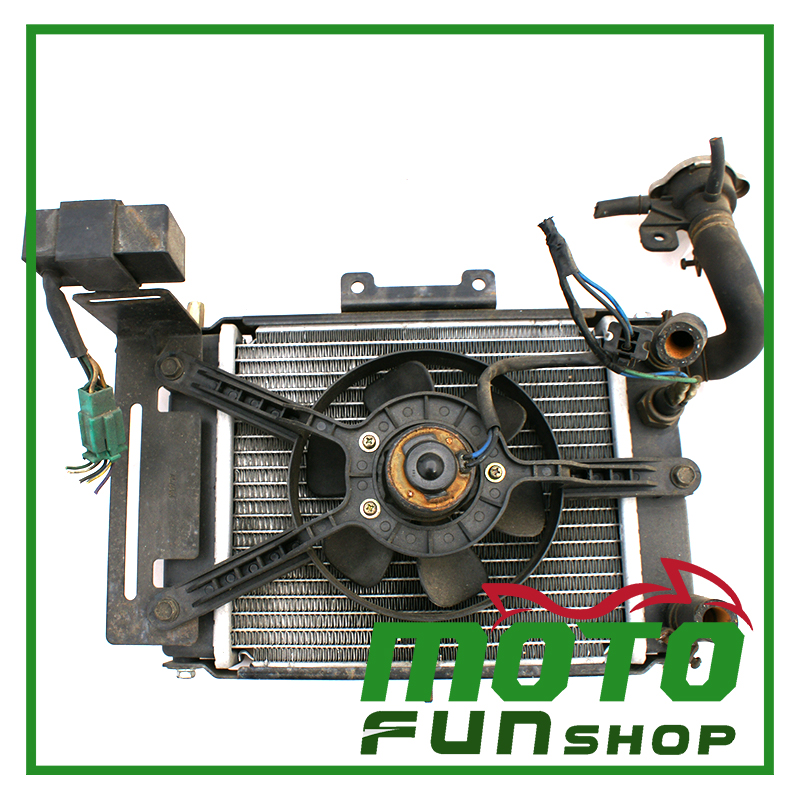 KYMCO_頂客250_水冷排 (2)